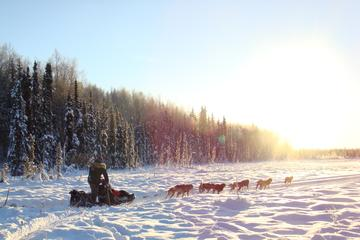 The Iditarod Aurora with Race Checkpoint Fly-Out