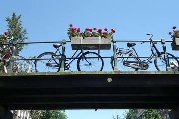 Recorrido en bicicleta de Ámsterdam: las zonas menos transitadas