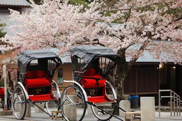 Privétour op maat: Kyoto in één dag