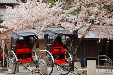 Tour personalizzato privato: visita di Kyoto in una giornata