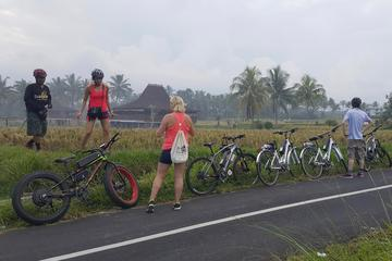 Adventure E-Bike Tour to See The Wonderful Ubud