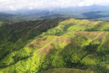 Harvest Caye- Jungle Hike and...