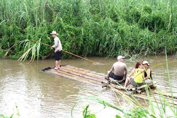 experience-a-palong-et-trek-a-chiang-dao-chiang-mai