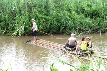 Expérience de 4 nuits à Chiang Mai : séjour aux villages de Palong et...