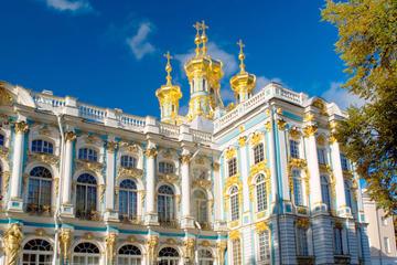 Excursão Privada: Viagem de Um Dia para Pushkin saindo de São...
