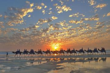Broome City Sightseeing Tour with...