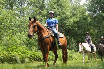 Horseback Riding Tour of Punta Cana