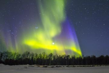 Excursión para ver la aurora boreal y...