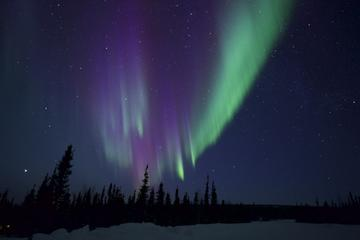 Day Trip Northern Lights Chaser Tour near Fairbanks, Alaska