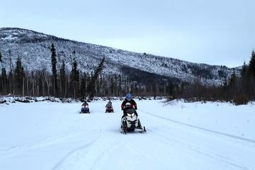 Snowmobile Adventure from Fairbanks