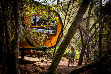 Blue Derby Pods Ride Experience 3-Day Mountain Bike Adventure in...