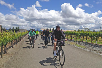 Healdsburg Cycling Wine Tour