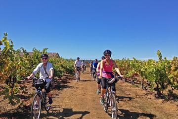Book Healdsburg Half-Day Cycling Wine Tour from Windsor on Viator