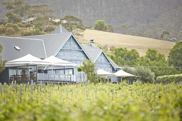 Frogmore Creek Winery by Helicopter with Optional Lunch