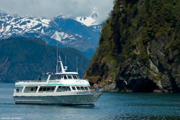 Croisière dans le parc national de Kenai Fjords au départ de Seward