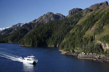 Crucero por la bahía Resurrección con la isla Fox
