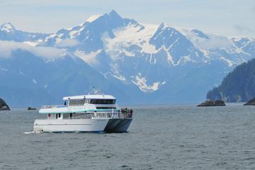 Excursión por la costa de Seward: Crucero turístico por el fiordo...