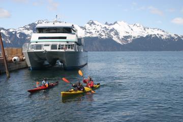 Fox Island Sea Kayaking with Sightseeing Cruise from Seward