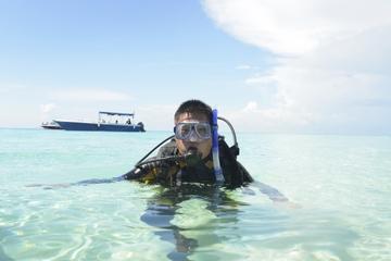Pacote de mergulho em 2 tanques na Ilha Catalina saindo de Punta Cana