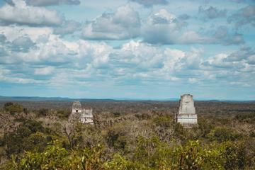 Tikal Visite privée en famille ou en...