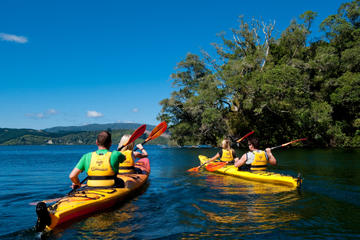 Lake Rotoiti Hot Pools and Glowworm Cave Kayak Tour from Rotorua