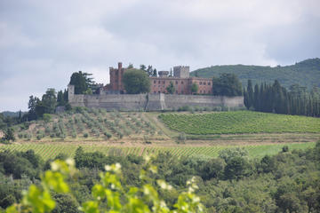Chianti Classico food & wine tour