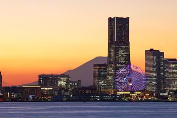 Private Transfer: Tokyo Hotels to Yokohama Port