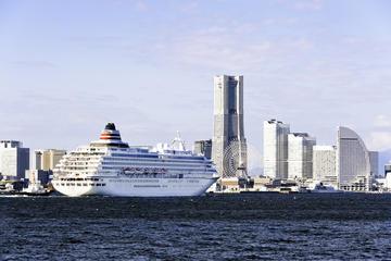 Private Yokohama Transfer: Yokohama Port to Tokyo