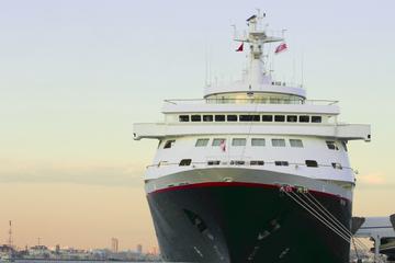 Privater Transfer: Hafen Tokio zu Hotels im Zentrum von Tokio und...