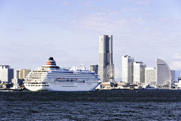 Traslado privado en Yokohama: Puerto de Yokohama a hoteles de Tokio