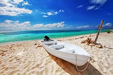 Skip The Line: Punta Sur Eco Beach...