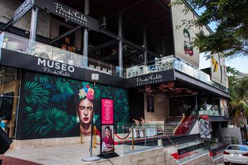 Frida Kahlo Museum regular admission ticket