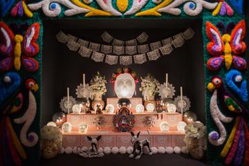 Skip The Line Admission: Museo Frida Kahlo Riviera Maya in Playa del Carmen