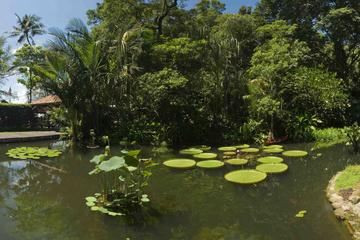 Tropical Spice Garden Admission Ticket & Audio Guided Tour