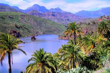 VIP Gran Canaria Shared 9 Hour Guided...