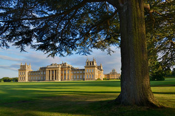 Blenheim Palace - Private Tour From...