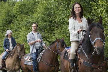 Aventura a caballo desde Medellín