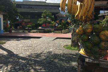 Combo Tour: Medellín City Tour and Antioquia's Food Markets Including...