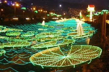 Visite des illuminations de Noël à Medellín