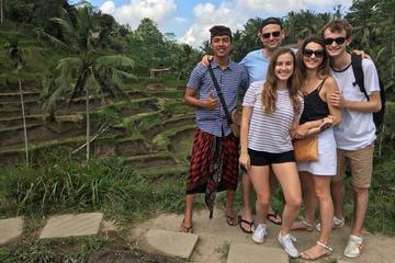 Bali Private Shore Excursion: Explore Ubud Culture with Private Car Charter