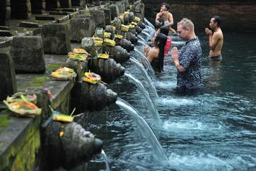 Private Day Tour: Bali Arts Natural Temple Tour with Friendly Driver