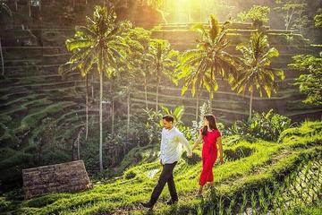 Private Shore Excursion: Ubud...