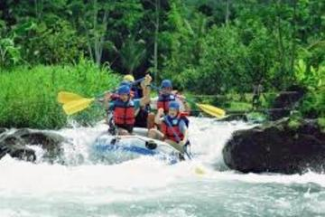 UBUD RAFTING AND MONKEY FOREST