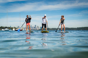 Stand Up Paddle on Sydney Harbour