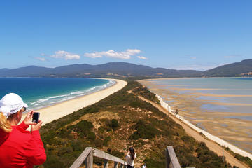 Bruny Island Food and Sightseeing...