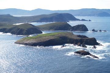 Bruny Island Sightseeing- und Gourmet Ausflug von Hobart