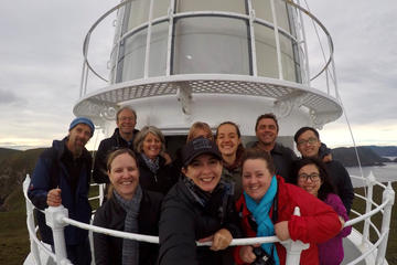 Fully Guided Bruny Island Lighthouse Tour