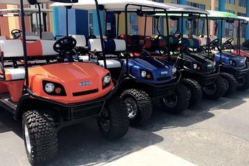 2 Hour Golf Cart Rental (4 passenger)