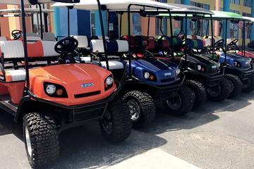 Book 8 Hour Golf Cart Rental (4 passenger) on Viator