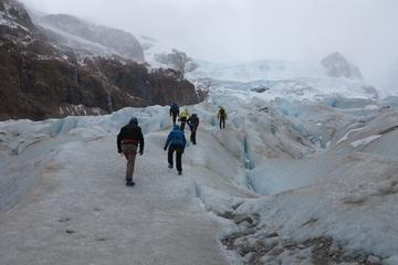 Ice Trekking Cagliero Glacier